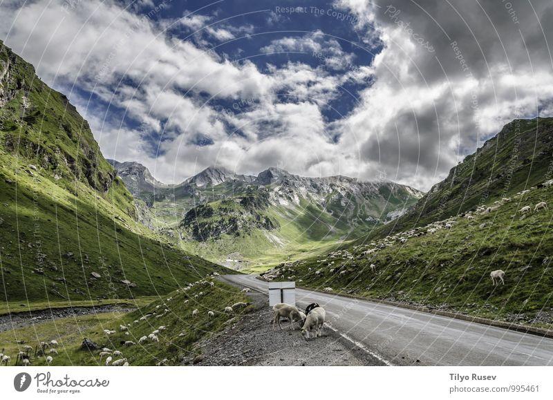 Himmel Natur Ferien & Urlaub & Reisen schön grün Farbe weiß Landschaft Wolken Winter Umwelt Berge u. Gebirge Straße natürlich Aussicht Europa