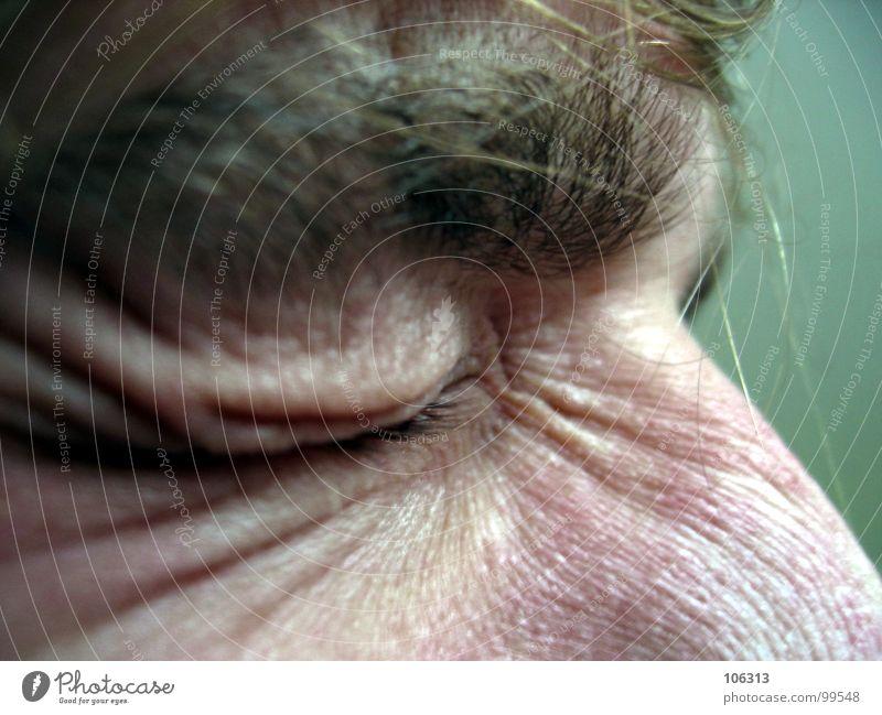 FOLGEN KOSMISCHER STRAHLUNG Augenbraue Mann geschlossen Trauer Wut Strahlung Stuhlgang drücken alt Verfall verfallen Pore Aussehen extrem Elefantenhaut Furche