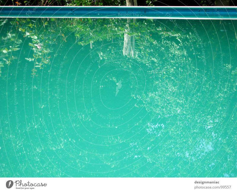 Pool 2.0 beta Reflexion & Spiegelung grün türkis hell-blau Pflanze Wasserpflanze Am Rand parallel Streifen Schwimmbad ruhig Einsamkeit leer Baum Blatt nass