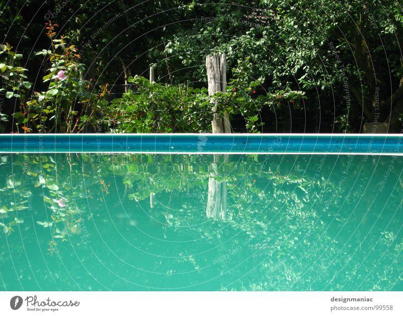 Halbe Halbe 2.0 alpha Beta Version 2.3++ ;-) Reflexion & Spiegelung grün türkis hell-blau Pflanze Wasserpflanze Am Rand parallel Streifen Schwimmbad ruhig
