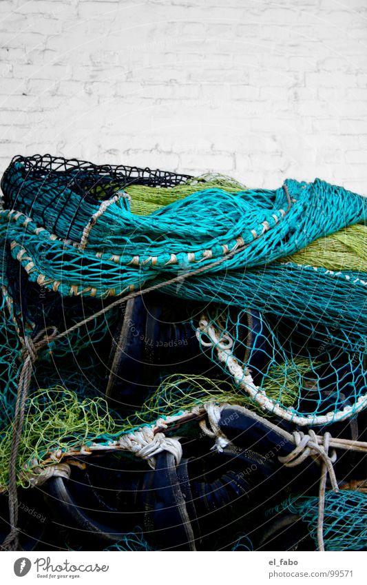 mir...... Meer grün gelb Mauer Fisch Netz fangen Handwerk türkis Ostsee Angeln Fangnetz Rügen Fischereiwirtschaft Zone Gemäuer