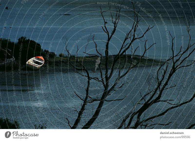 das Boot Wasserfahrzeug Strand dunkel Stimmung See Baum Neuseeland abstrakt Hintergrundbild Herbst Winter Trauer Verzweiflung Kontrast morbide Surrealismus