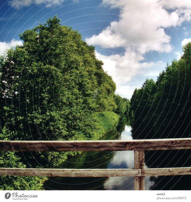 Noch mal Kanal Augustów Umwelt Natur Landschaft Pflanze Urelemente Luft Wasser Himmel Wolken Klima Schönes Wetter Baum Bach Fluss Brücke Brückengeländer Verkehr