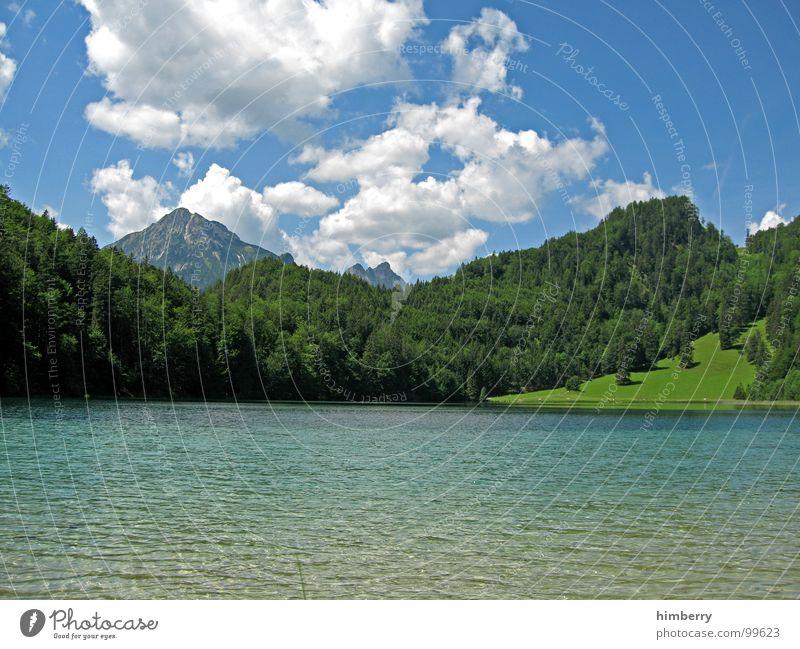 riviera royal XIV Natur Himmel grün Pflanze Sommer Wolken Wald Wiese Gras Berge u. Gebirge Landschaft Umwelt Alpen Hügel Österreich Wildnis