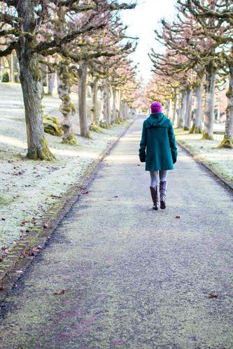 durch die Allee Mensch Frau Jugendliche grün Baum Junge Frau Winter kalt Erwachsene Traurigkeit feminin außergewöhnlich Garten gehen rosa Park
