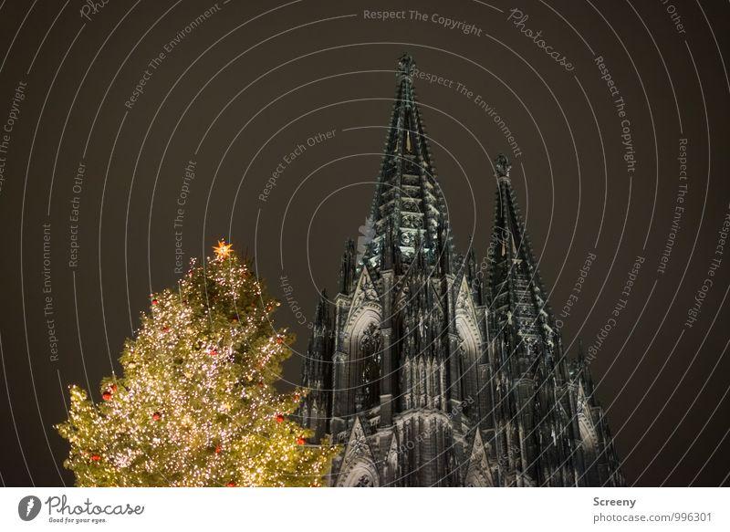 Drei Spitzen Weihnachten & Advent Köln Stadt Stadtzentrum Kirche Dom Sehenswürdigkeit Wahrzeichen Kölner Dom leuchten Turm Tanne Weihnachtsmarkt Lichterkette