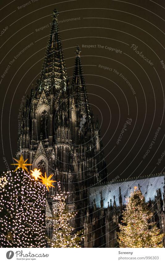 Weihnachten am Dom Weihnachten & Advent Köln Stadt Stadtzentrum Kirche Sehenswürdigkeit Wahrzeichen Kölner Dom leuchten Spitze Tanne Weihnachtsmarkt