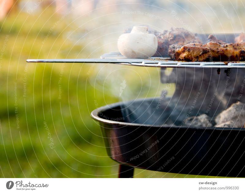 Grillsaison Natur Ferien & Urlaub & Reisen Sommer Freude Ferne Wiese Feste & Feiern Freiheit Garten Lebensmittel Lifestyle Park Freizeit & Hobby