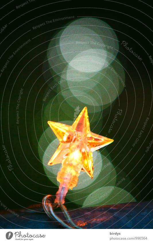 Sternbild Stil Weihnachten & Advent Lichterkette Stern (Symbol) leuchten ästhetisch außergewöhnlich positiv gelb grün Glaube Hoffnung Unschärfe kreisrund