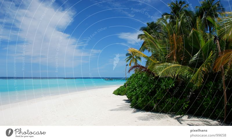 Inselfeeling in High Definition Wasser weiß Meer grün blau Pflanze Sommer Strand Ferien & Urlaub & Reisen Wolken Einsamkeit gelb Ferne Freiheit Holz Landschaft