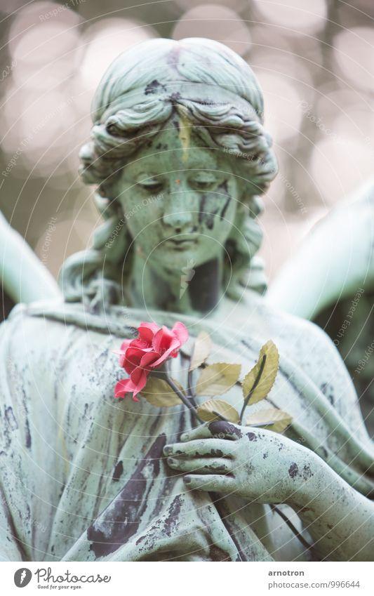 Sad Angel 1/2 Mensch Jugendliche grün Junge Frau Hand Traurigkeit Gefühle feminin Blüte Denken Haare & Frisuren Kopf Metall rosa Hamburg Trauer
