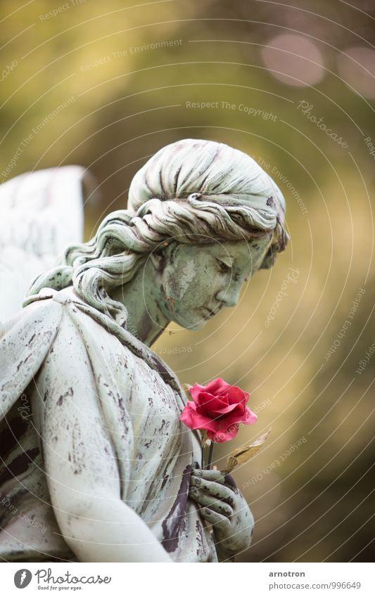 Sad Angel 2/2 Haare & Frisuren harmonisch Trauerfeier Beerdigung feminin Junge Frau Jugendliche Kopf Hand 1 Mensch Rose Blüte Friedhof Ohlsdorf Hamburg Locken