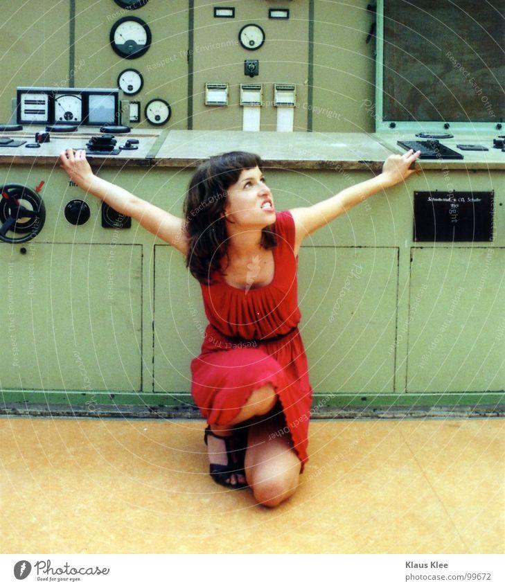 TO PLAY WITH THE BOMB :::: Katze Mensch Frau grün rot Freude Wärme sprechen Bewegung lustig Gras Spielen Zeit Lampe gehen Erde