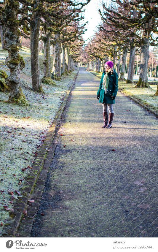 in der Allee Mensch Frau Jugendliche schön Sonne Baum Junge Frau ruhig Ferne Winter kalt Erwachsene feminin Park Zufriedenheit warten