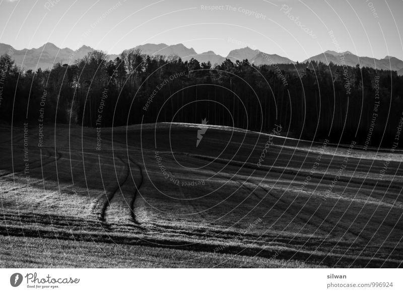 Licht- & Traktor- Spuren Himmel schön weiß Landschaft Winter schwarz kalt Berge u. Gebirge Herbst Beleuchtung grau Feld bedrohlich Schönes Wetter Vergänglichkeit Alpen