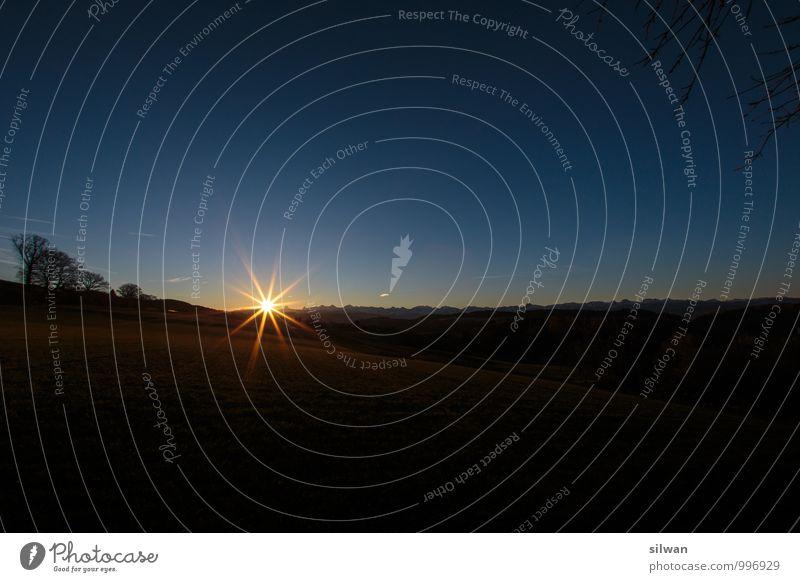 Sonnen - Stern * Himmel schön Baum Landschaft Winter kalt Berge u. Gebirge Beleuchtung Horizont glänzend Kraft ästhetisch Zukunft Schönes Wetter Gipfel