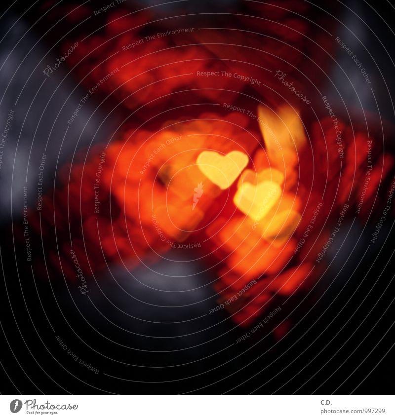 Lovestar Herz Stern (Symbol) blau gelb orange rot Weihnachten & Advent Weihnachtsstern Weihnachtsdekoration Lampion Farbfoto Innenaufnahme Menschenleer
