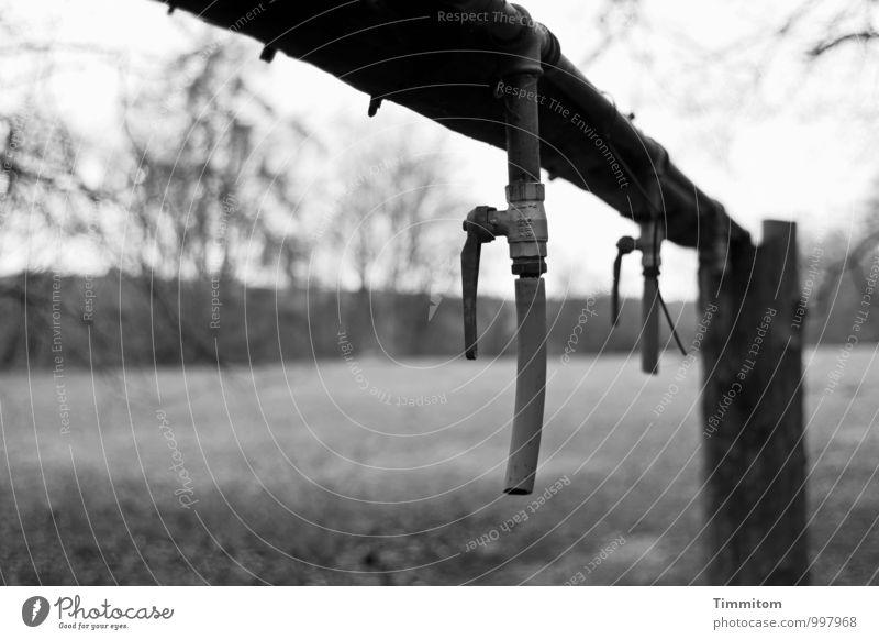 Boden- und Ackertag   Da muss Wasser dazu! Umwelt Natur Wiese Holz Metall warten dunkel grau schwarz Pfosten Stab Rohrleitung Zapfhahn Schlauch Wasserrohr