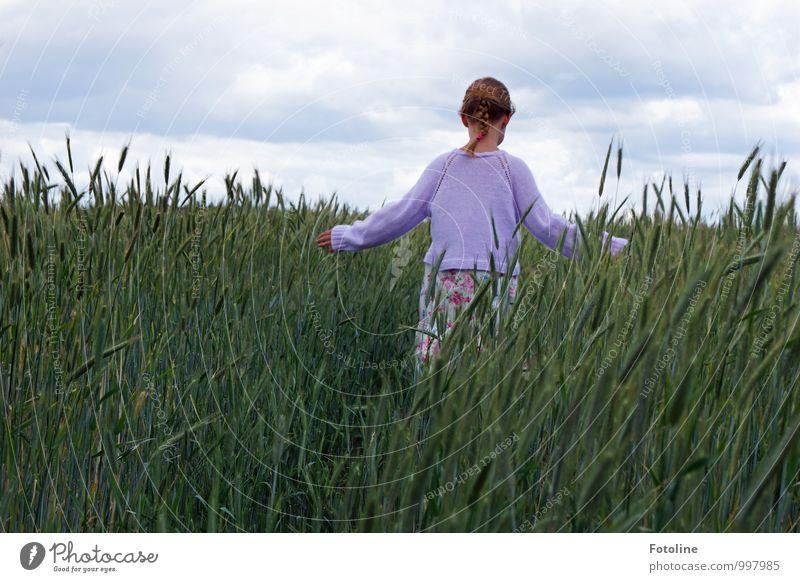 Im Sommer Mensch feminin Kind Mädchen Körper Haare & Frisuren Rücken Arme 1 Umwelt Natur Himmel Wolken Pflanze Nutzpflanze Feld frei natürlich Kornfeld Getreide