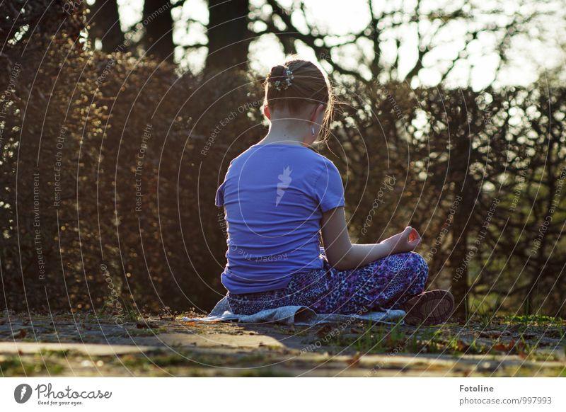 Entspannung Mensch feminin Mädchen Kindheit Körper Kopf Haare & Frisuren Rücken Arme Hand Umwelt Natur Landschaft Pflanze Urelemente Erde Herbst Sträucher
