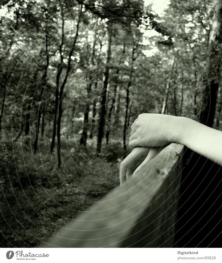 Die Einsamkeit des Wesens Hand Wald ruhig ungewiss Denken Trauer Verzweiflung Mensch Schwarzweißfoto nachdenken