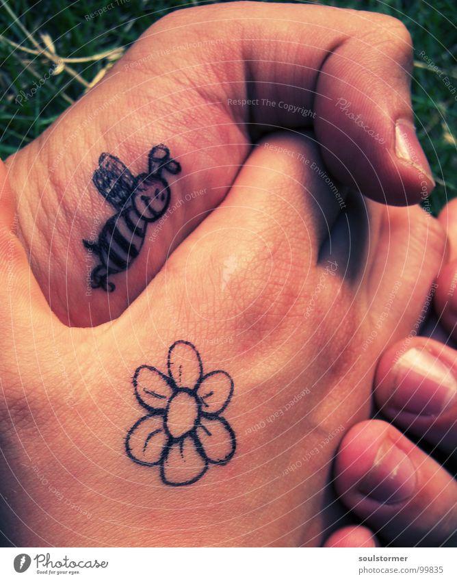Bienchen und Blümchen pt1 Hand Blume Liebe Wiese Gefühle Gras Blüte Frühling Zufriedenheit gehen Finger Rasen berühren Weide Zeichen Biene