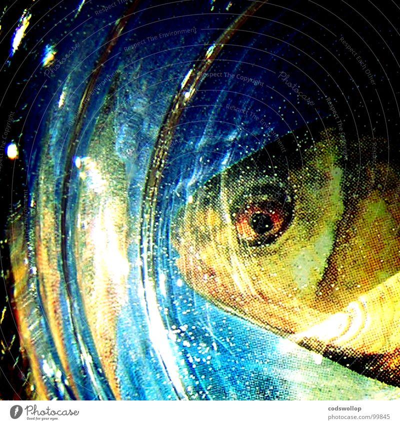 babel fish Wasser glänzend Fisch Aquarium Fischkopf Rotauge