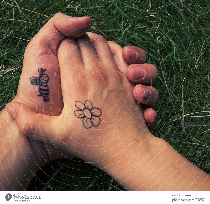 Bienchen und Blümchen pt2 Biene Blüte Hand Finger Daumen Hand in Hand gehen Liebe berühren Frühlingsgefühle Leidenschaft Blume Gras Grünpflanze Wiese Comic