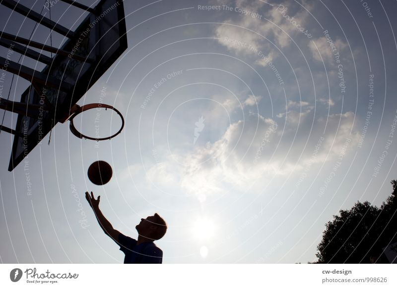 Das Runde muss ins Runde Basketball Basketballkorb Basketballplatz Basketballer Mensch maskulin Junger Mann Jugendliche Erwachsene Leben 1 18-30 Jahre