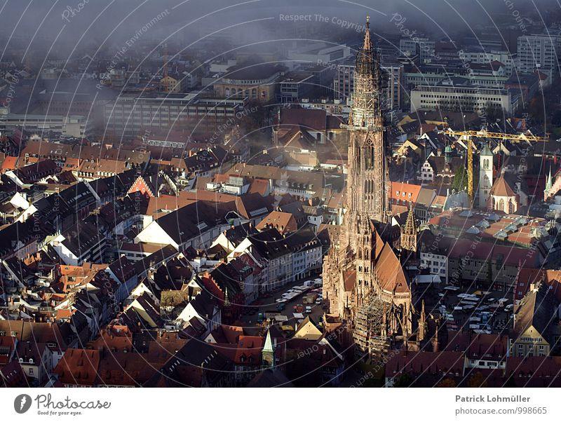 Freiburg von oben Stadt alt Haus Umwelt Herbst Architektur Gebäude Religion & Glaube Stimmung Deutschland Nebel Tourismus ästhetisch Aussicht Europa Kirche