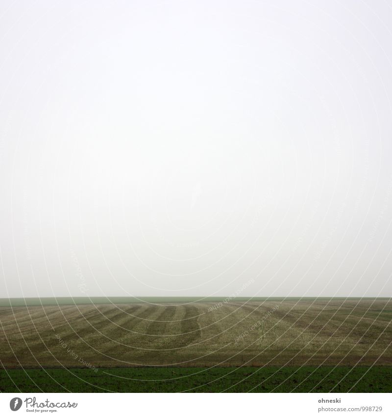 Das Sein und das Nichts Himmel Einsamkeit Landschaft Wolken Ferne Winter Wiese Tod Horizont Feld Nebel Urelemente Unendlichkeit Trauer geheimnisvoll Sehnsucht