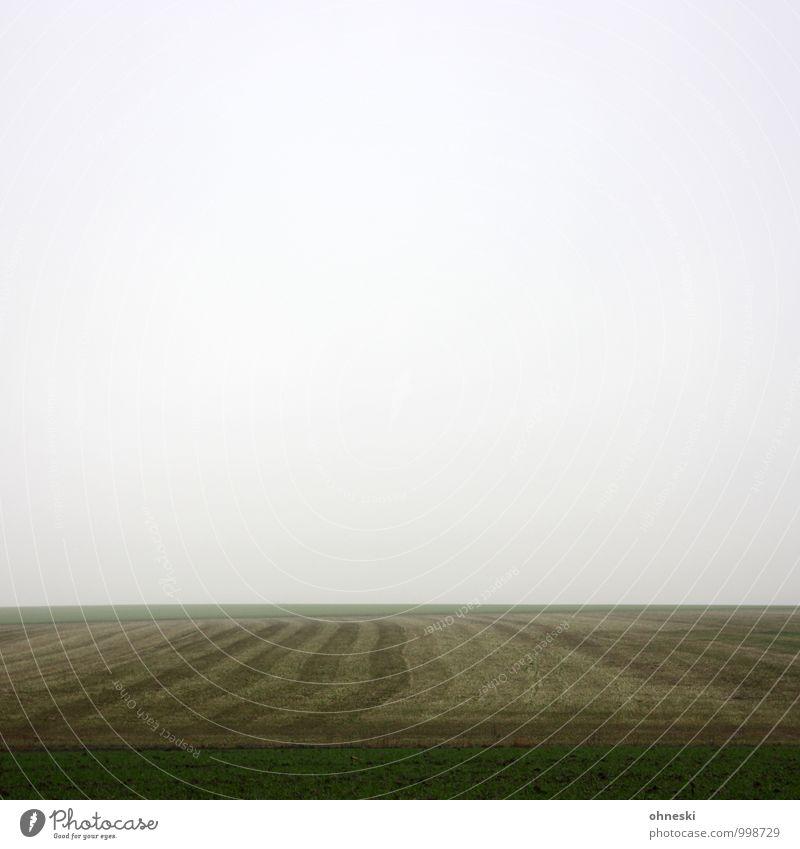 Das Sein und das Nichts Landschaft Urelemente Himmel Wolken Winter Nebel Wiese Feld Trauer Müdigkeit Sehnsucht Einsamkeit Zukunftsangst Verzweiflung