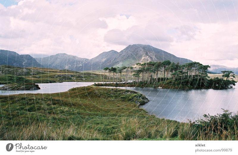 Schweigen-Ansicht See Sommer Gras Farbe Frieden Wasser Berge u. Gebirge Republik Irland Natur Erholung Gelassenheit Windstille aussruhen Landschaft Wolkenhimmel