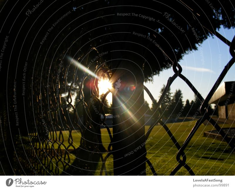 fence Licht Sommer Himmel Mitte sun sunlight shine trees glow sky playground rays sunshine blue Einkaufszentrum