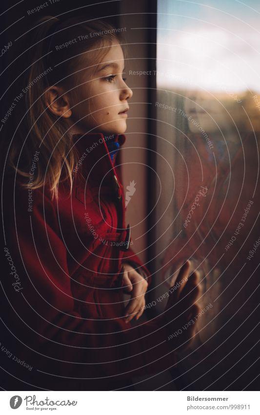 Meile für Meile Mensch Kind Ferien & Urlaub & Reisen blau rot ruhig Mädchen schwarz Fenster feminin braun träumen blond Kindheit beobachten fahren