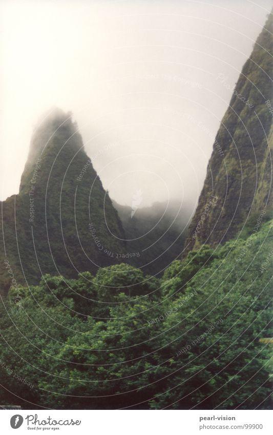 Bergschenkel Berge u. Gebirge Urwald Eingang Hawaii Öffnung Schwüle Maui