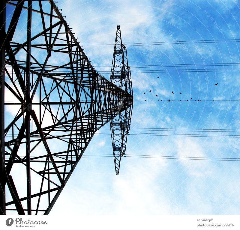 Zwischenstop Vogel Krähe Tier schwarz Wolken Elektrizität Strommast Versammlung Stahl netzartig Draht Drahtseil Symmetrie Konstruktion Windkraftanlage weiß