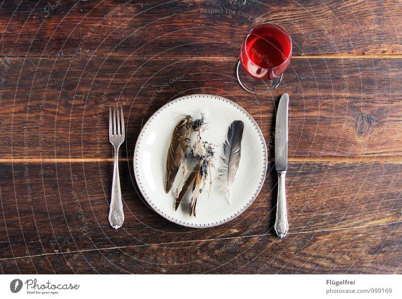 Gestorben für einen kurzen Genussmoment. rot Tier Tod Foodfotografie Vogel liegen Feder Ernährung kaputt Lebewesen Tragfläche Wein Restaurant Teller Mahlzeit Fleisch