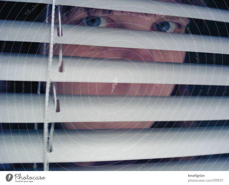 Augen-Blick Jalousie grau Streifen verdeckt Aluminium Sichtschutz Durchblick Frau Konzentration Gesicht verstecken Kopf Lamelle beobachten