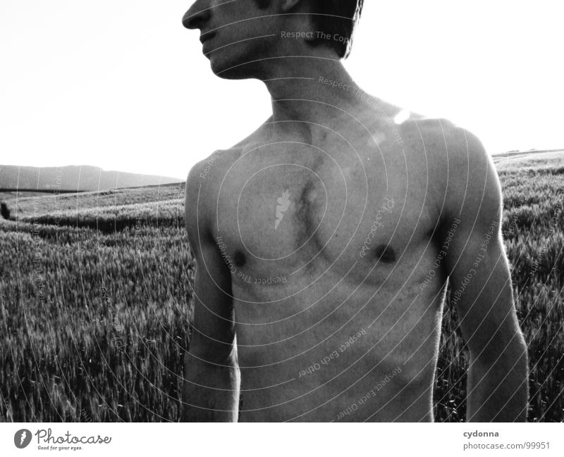 summer breeze I Porträt Mann Identität einzigartig Licht Denken dunkel Silhouette Feld Sommer Oberkörper nackt Kerl dünn Schwarzweißfoto Mensch Gesicht face