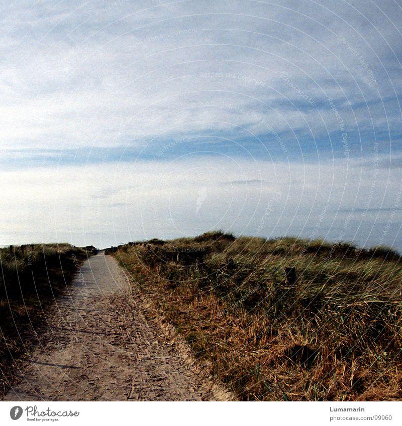 Mitte des Weges Küste Gras Wolken stehen lang Ferne Unendlichkeit Horizont stagnierend Pause ruhig schön erholsam Spaziergang gehen langsam kommen Ankunft