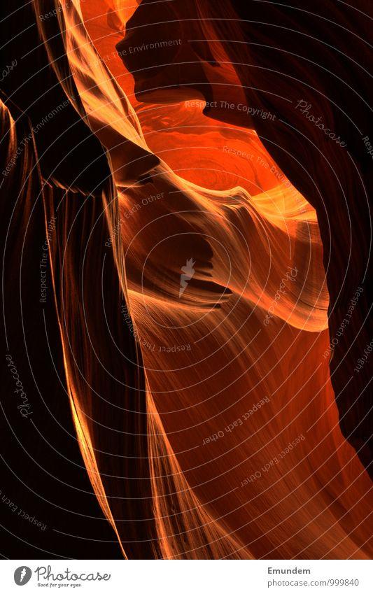 Antelope Canyon Umwelt Natur Landschaft Urelemente Sand Feuer Wasser Schlucht USA Nordamerika Menschenleer ästhetisch Flüssigkeit rund schön weich orange rot