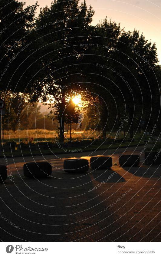 Am Abend Himmel Baum Sonne Sommer ruhig Blatt schwarz Straße dunkel hell nass geschlossen leer Hoffnung Frieden lang
